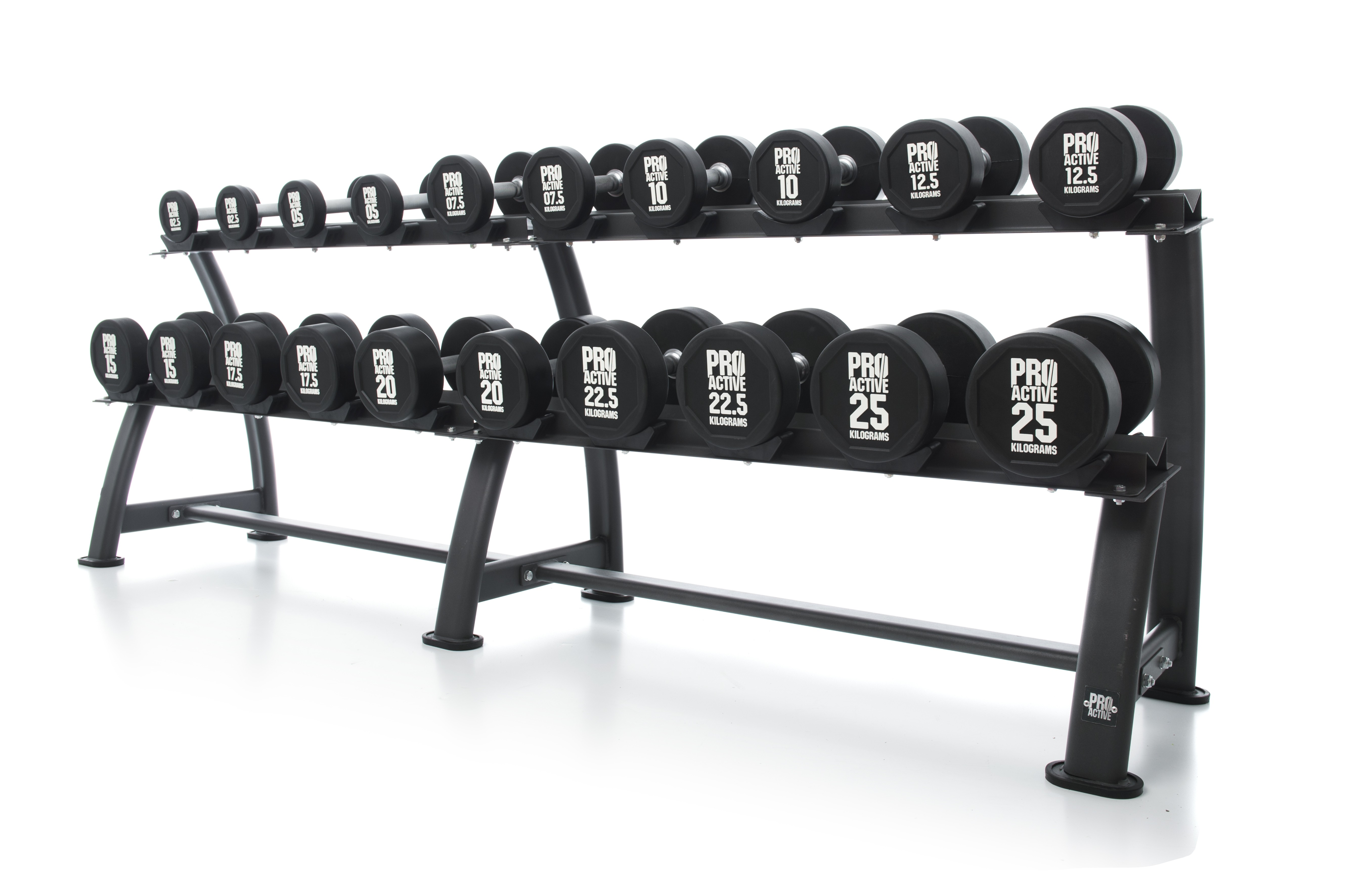 PROACTIVE DUMBBELL RACK (HOLDS UP TO 10 DUMBBELL PAIRS) (DEFAULT)