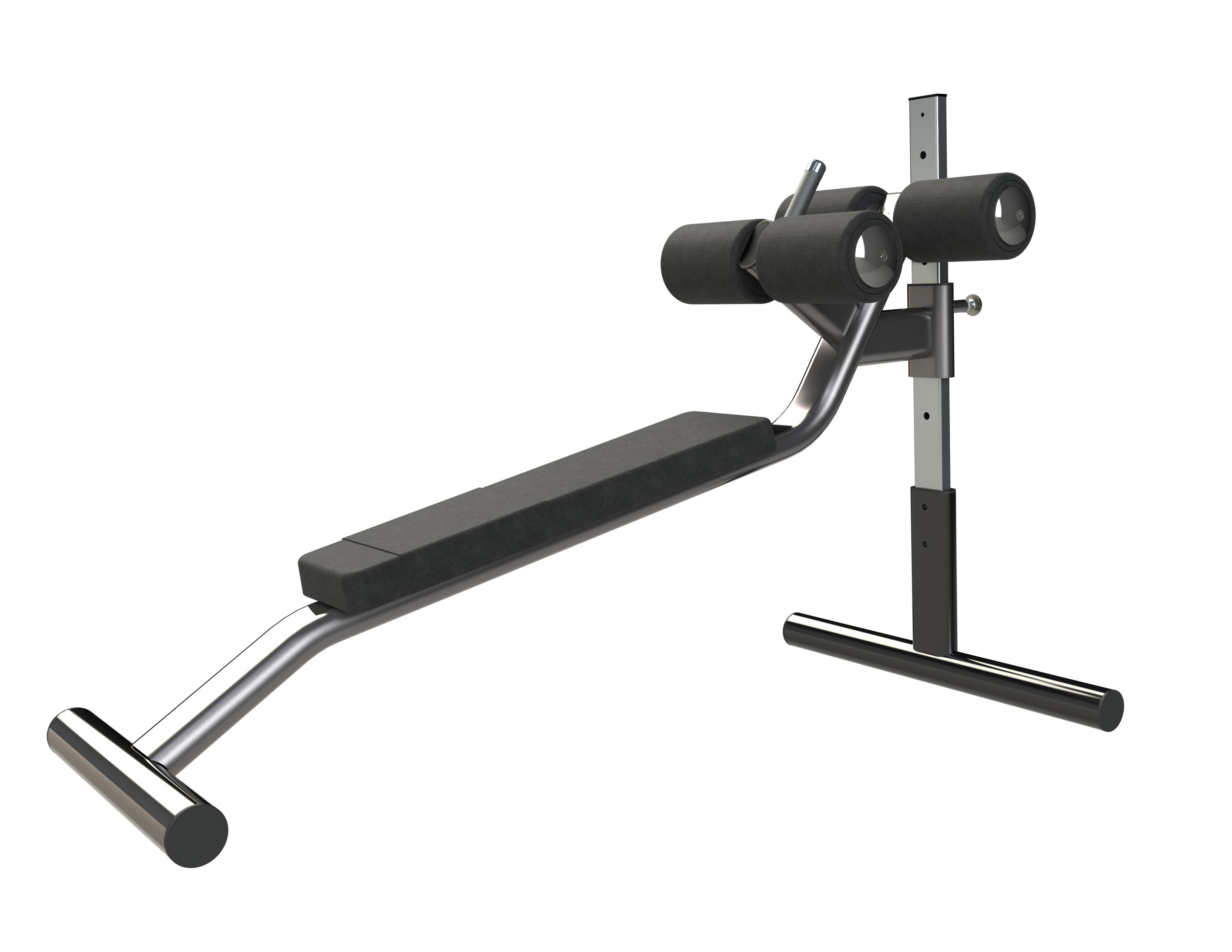 Exigo Adjustable Abdominal Ladder Bench