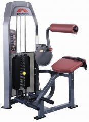 Johnson - ST-161 Back Extension Machine