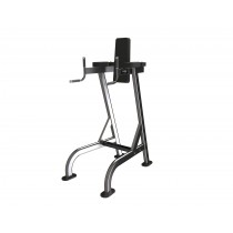 Exigo Leg Raise/Dip Station