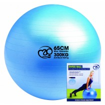 TMG Swiss Ball 300kg B/R with DVD and Pump