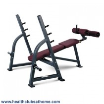 Johnson Olympic Decline Bench