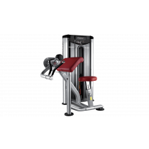 BH Fitness Biceps Curl