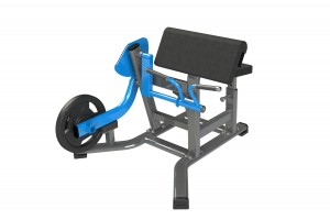 Exigo Seated Bicep Curl