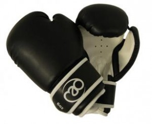 TMG Artificial Leather Sparring Gloves
