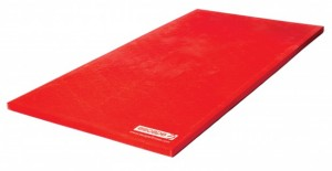 Combat Mat with Anti Slip Base